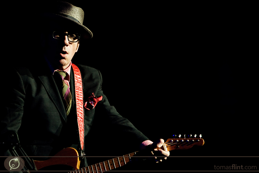 elvis_costello-flint-2