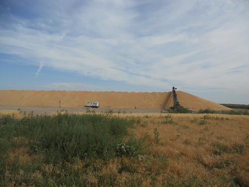 Hemingford wheat pile