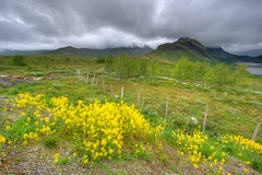 Park Narodowy Jotunheimen (Mariusz Petelicki) Tags: norway norge hdr jotunheimen norwegia jotunheimennasjonalpark