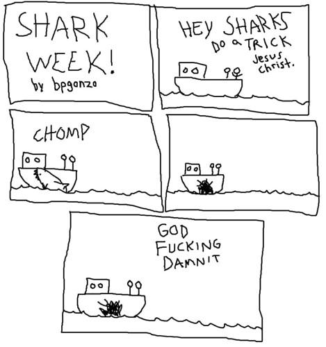 shark7