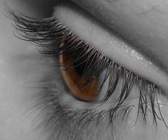 Brown eye (christine1241) Tags: macro eye selectivecolour
