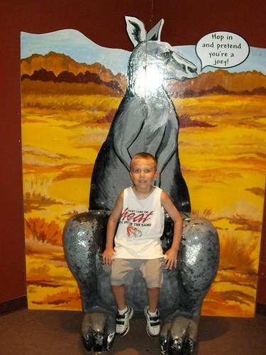 Zoo - 7-17-11 062