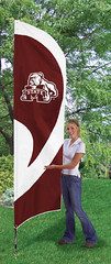 Mississippi State Tall Feather Flag