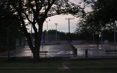 wet court (Mark.Swanson) Tags: trees bench illinois il sidewalk normal tenniscourt maxwellpark