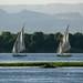 Felucas barcos a vela no Rio NIlo