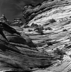 Coyote Buttes South (Tonton Dave) Tags: arizona usa monochrome landscape utah rocks desert hasselblad paysage roches grandstaircaseescalante vermillioncliffs coyotebuttessouth
