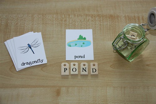 Pond Nomenclature Cards with Wooden Letters (Photo from Counting Coconuts)