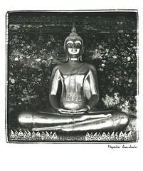Thai Budda (heronop) Tags: rolleiflex thailand trix size 400 112 foma 11x14 35f 2011