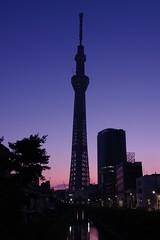 The Tokyo Sky Tree in the twilight (ELCAN KE-7A) Tags: japan tokyo pentax   k7 2011  skytree