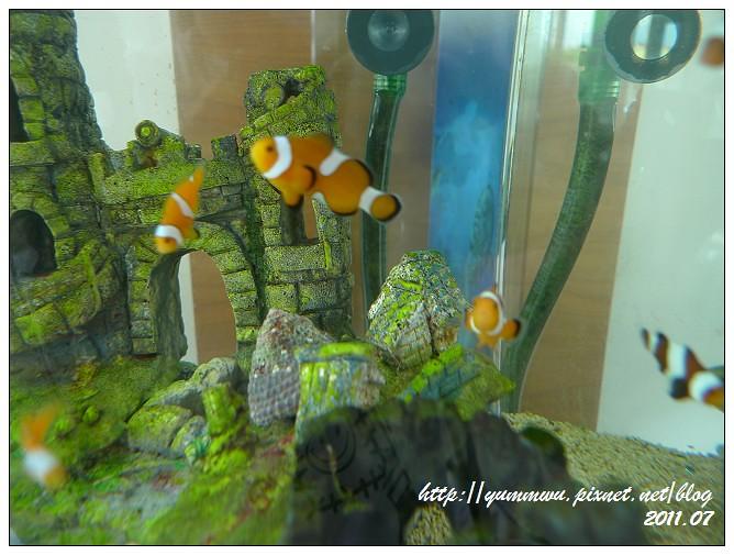 110711小丑魚主題館 (7)