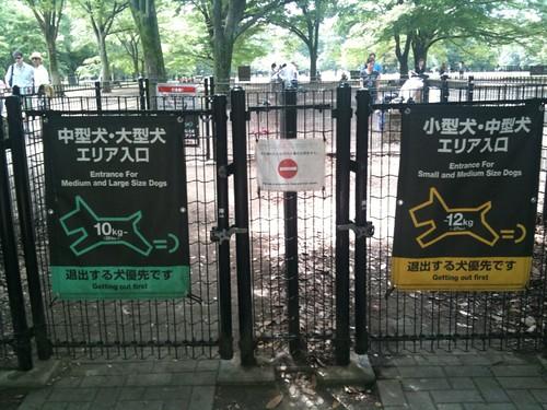 入り口は大型犬と小型犬に分けられています。