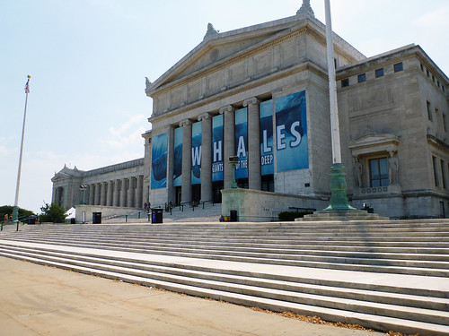 Visit to the Field Museum in Chicago
