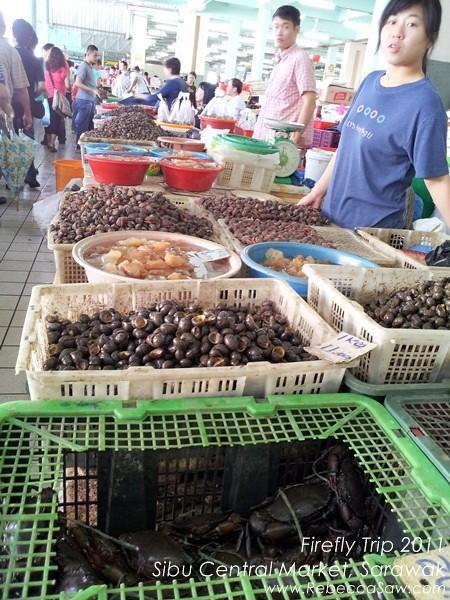 Firefly trip - Sibu Central Market, Sarawak.02-2
