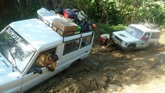 A friendly tow (videsent) Tags: travel trees hot southamerica colombia jeep mud stuck hike jungle humid lostcity ciudadperdida