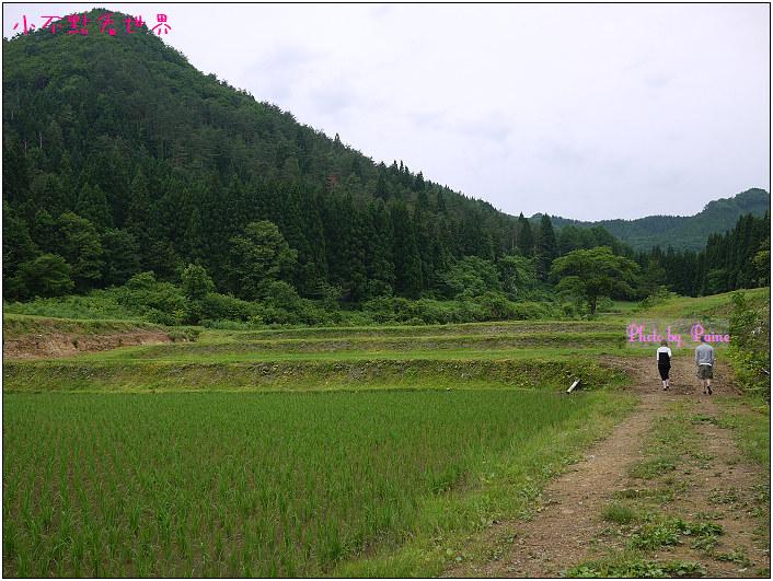 綠之風民宿-39.jpg