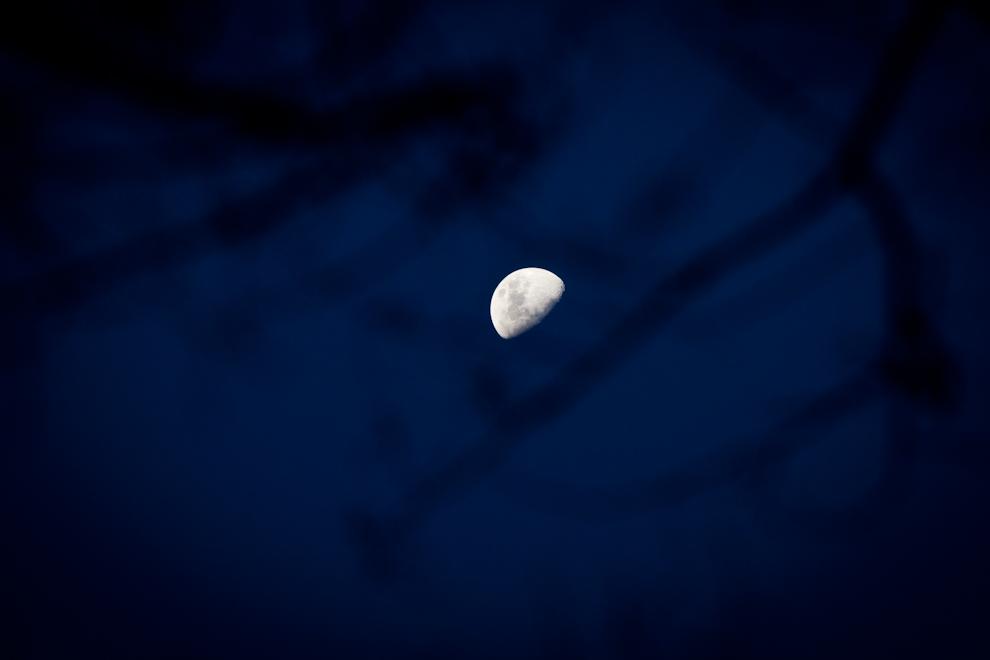 La luna se esconde entre las ramas secas de un árbol, minutos después del atardecer, en las orillas del Río Jejuí en las cercanías de Choré en el departamento de San Pedro. (Tetsu Espósito)