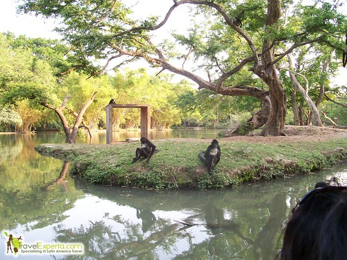 5981292499 af43fe305c Safari Chapin, Guatemala   Photo Essay