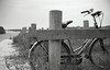 lonely bike (Jos Mecklenfeld) Tags: bw lake film bike 35mm meer minolta rangefinder ishootfilm himatic 40mm groningen fiets 7sii fomapan rokkor westerwolde minoltahimatic7sii epsonv500 fomapan100classic sellingerbeetse