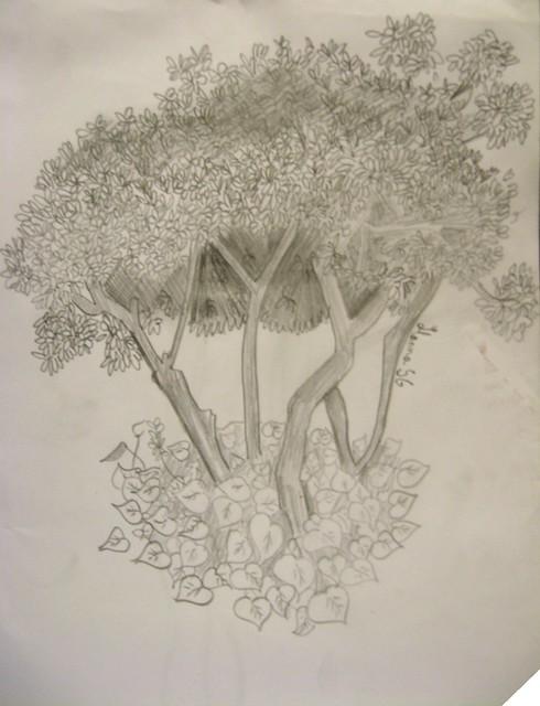 arbol zelda