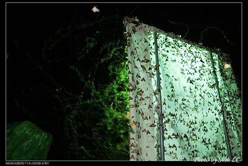 蛾大多都是夜行性,並且會圍繞著明亮的物體盤旋,具備被亮光吸引的趨光性。研究人員在野外點燈,觀察蛾種。攝影:施禮正