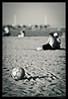 Dia de playa (David Vazquez) Tags: blancoynegro mar spain agua bokeh asturias playa arena gijon pelota virado balón