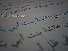 آميّ عَآيِشَه رُغم آنُوفَ الحَحآقِديّن ~ (KrkQ8) Tags: الله ام aisha بن عمر رضي عنه عنهم اسلام المؤمنين الخطاب ابوبكر عائشه