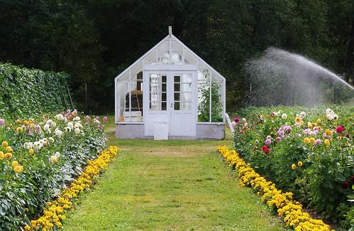 Thumbnail from Rosendals Garden