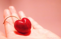 ♥ (mayauxo) Tags: pink red color colour cute love colors fruit cherry happy colours hand heart bokeh girly happiness give giving lovely shape heartshaped