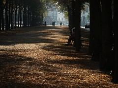 (malidinapoli) Tags: autumn herbst denhaag thehague backagain hersft