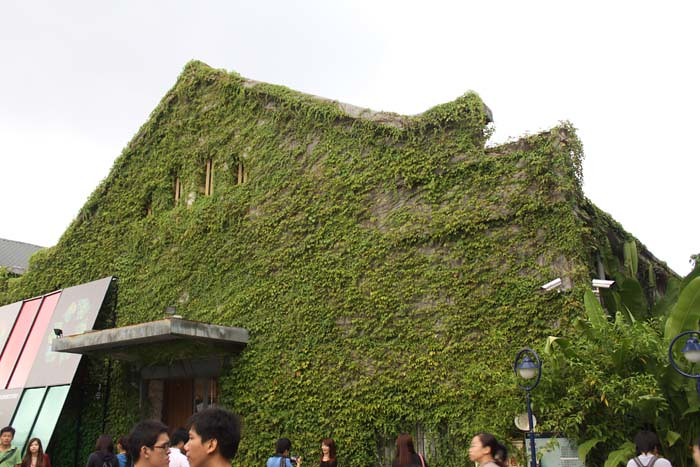 Тайбэй. Зеленый дом