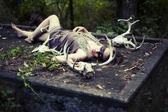 jess_sidhe_web-7870 (unit18_nate) Tags: forest woods dress barefoot alienbees deerskull nikond700