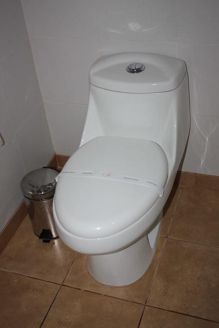 flush toilet images