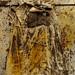 fusta, vestit, metall, acrílic, terra, cola blanca, filferro i ploma. grifoll