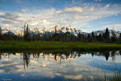 Grand Terons from Beaver Pond (kparsha) Tags: trees sky snow mountains reflection green water grass pine clouds stars landscape calm yellowstonenationalpark ripples d200 grandtetonnationalpark beaverpond