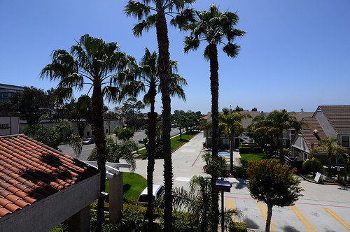 The view from my room at Torrance