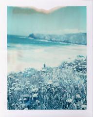 The Waves (emilie79*) Tags: ocean flowers cornwall lizardpoint polaroid180