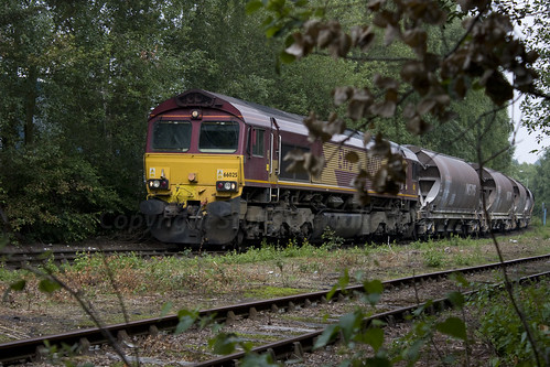 660256G71110711 by Staffs Oatcake