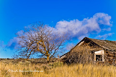 Old Farm House - Umptanum Road, Kittitas County, Washington