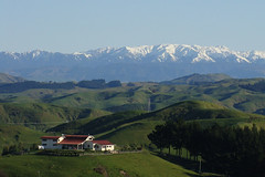 This is not my Beautiful House (Home Land & Sea) Tags: newzealand landscape view snowcapped nz sugarloaf pointshoot sonycybershot hawkesbay notmyhouse taradale wishitwas kawekaranges dsch3 homelandsea