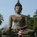 Muitas estátuas de Buda