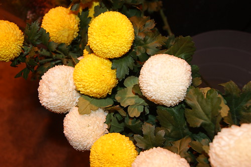 ping pong ball flowers