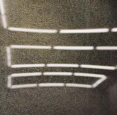 Neon Lines (Scilla sinensis) Tags: lighting reflections painting lights licht beleuchtung spiegelungen ronihorn