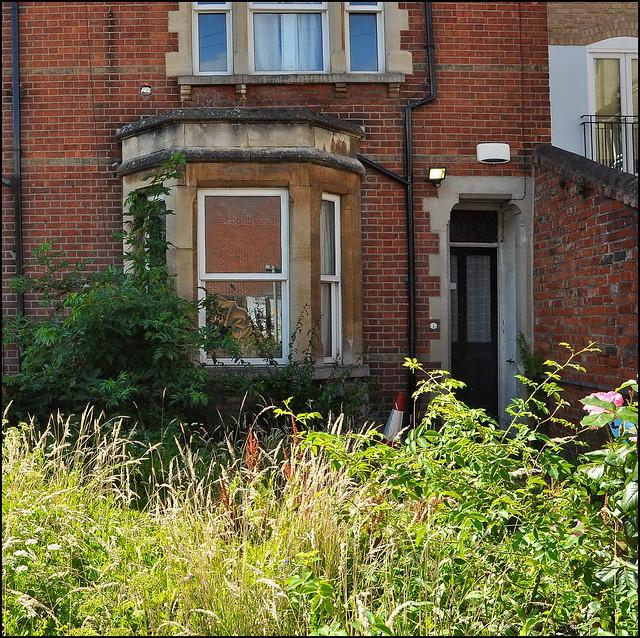Best of Oxford's Gardens No. 104