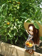 Gardening Gone Bad 04
