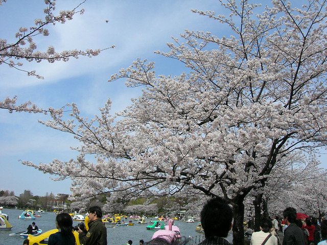 d7-22-ueno-park