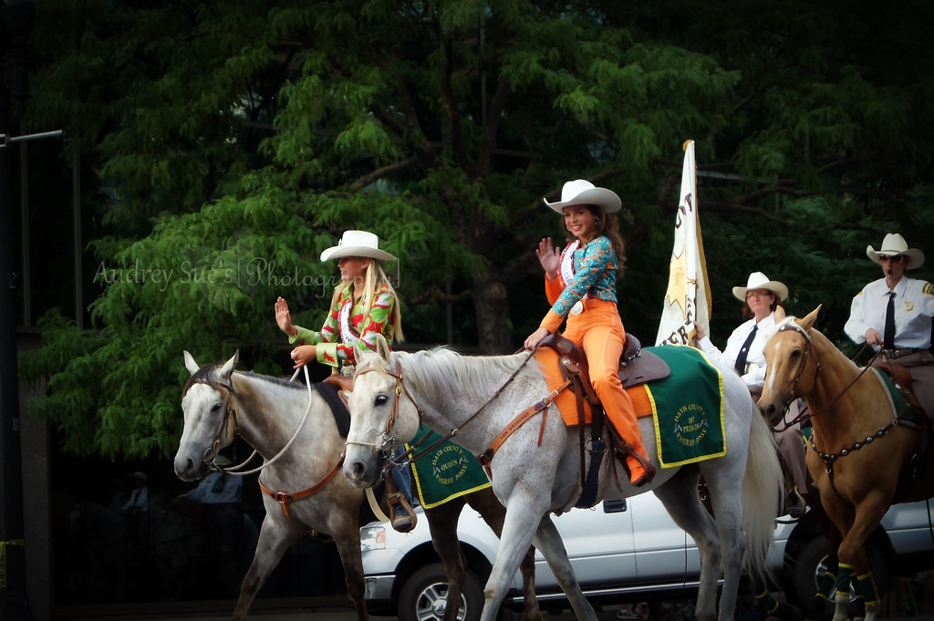 horseparade9
