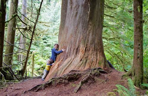 Tree huggers 2011