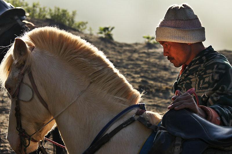 Horseman IMG_5048-w