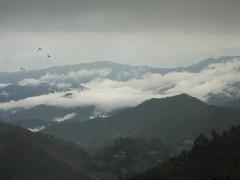 Pithoragarh valley near Barinag Uttrakhand (P Chander) Tags: mountain himalaya