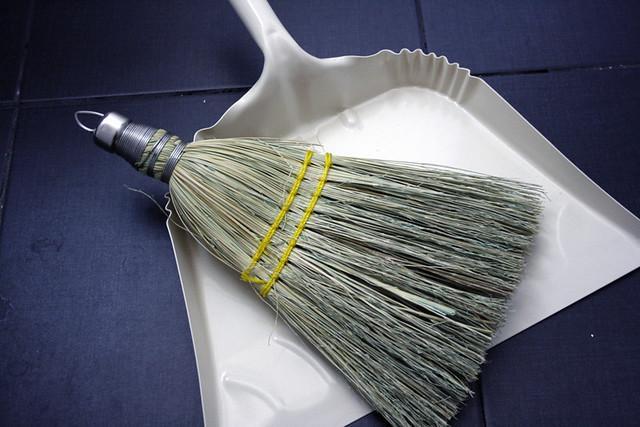 dust broom/pan